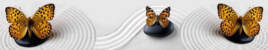 Скинали — Бабочки на камнях