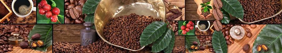 Скинали — Коллаж кофе с листьями